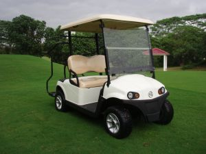 2 Seater Qualitäts-Doppelt-Arm-unabhängige Aufhebung-Golf-Karre mit Transportgestell-Pedal