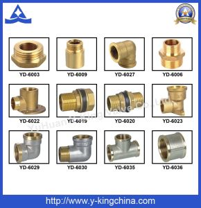 Codo de tubo de latón pulido adaptador (YD-6031)