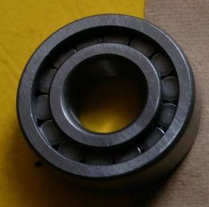 Rolamentos de Roletes de fábrica na China ISO Nj205EV rolete cilíndrico