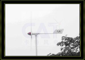 1000W Wind Turbine Generator (CAT-1KW)