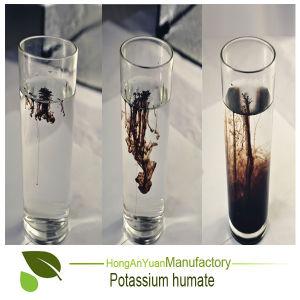 Het concurrerende Kalium Humate van de Meststof van de Prijs Organische