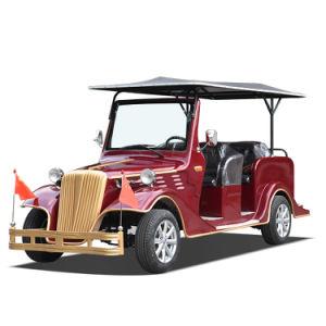 كهربائيّة غلّة كرم سيارة مطير حافلة زار معلما سياحيّا سيارة حدث تقليديّ سيارة