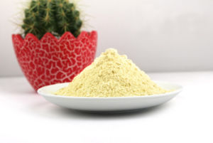 El polvo de Dunaliella Salina Beta caroteno con un 10%