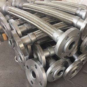 Tubo flessibile del metallo allineato PTFE dell'acciaio inossidabile con la flangia