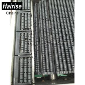 Hairise Plastikrollen-Förderanlagen-Ketten-Übertragungs-System