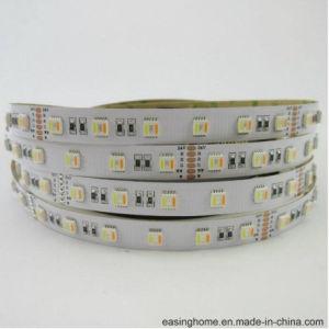 2018 l'indicatore luminoso di striscia registrabile caldo di vendite SMD5050 RGB+CCT impermeabilizza 5 chip in 1 indicatore luminoso di striscia rigido del LED per l'illuminazione della corda del LED