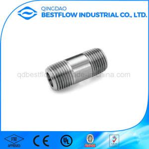 304/304L/316 Aço Inoxidável/bico de aço carbono galvanizado/Preto/solda contínua niple de lubrificação