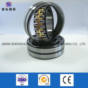 Rolamento de OEM com certificação ISO de fileira dupla fila única titular cobre Zz, 2RS, P0, P6, P5, C3, C4, W33 ecrã de vibração mancal de rolamento esférico do rolamento de rolos