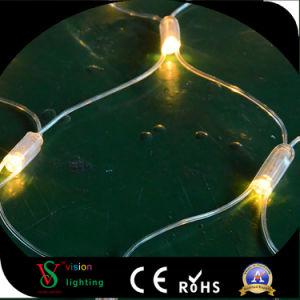 Lichter des LED-Weihnachtsnetz-LED
