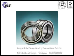 Complemento completo do rolamento de roletes cilíndricos SL045060de PP