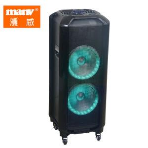 Grande potência de luz colorida carrinho Bateria recarregável com microfone, alto-falante