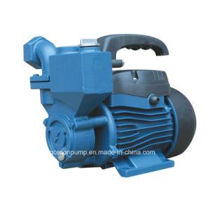 Le rotor en laiton électrique jardin intérieur de la pression de la pompe à eau