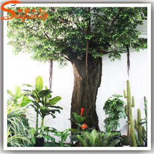 Novo Estilo barato viver Banyan Ficustree artificial ao ar livre