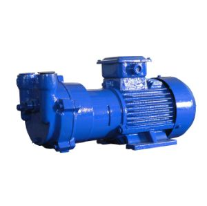 2BV2060-Ex Water (Liquid) - Ring Vacuum Pump