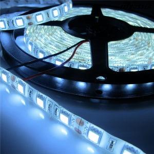 luzes azuis da decoração do diodo emissor de luz da listra do diodo emissor de luz de 12V SMD5050 72W 60LEDs IP65