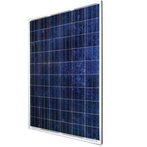 Haute efficacité Panneau solaire 230W avec 6'' de cellules (Nîmes60-6-230P)