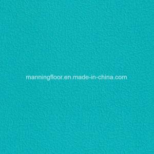 De 8mm BinnenVloer van uitstekende kwaliteit van de Sporten van het Meer Blauwe Multifunctionele Vinyl