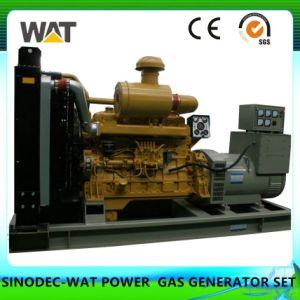 Grupo electrógeno de 260 kw la biomasa con CE, SGS certificados