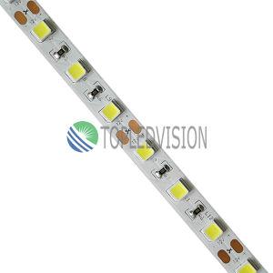 CC flessibile 12V/24V dell'indicatore luminoso di striscia di nuovo disegno SMD5054 LED 60LEDs/M