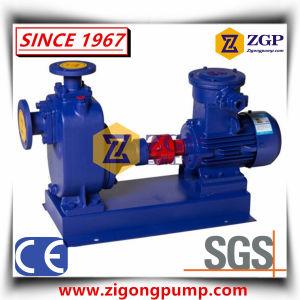 Horizontale industrielle chemische Abwasser-Wasser-selbstansaugende Pumpe
