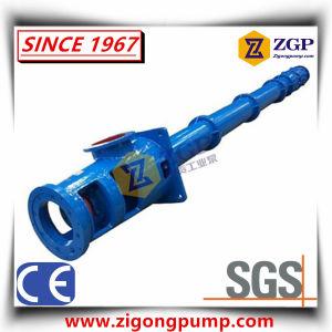 Pompa del pozzo del pozzetto dell'asse di rotazione della turbina sporta asta cilindrica lunga verticale