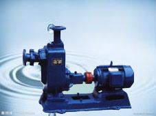 Zwの自動プライミング下水ポンプ