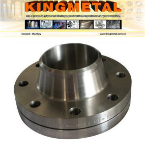 Il codice categoria 300 di ASTM A182 F51 ha forgiato la flangia del collo della saldatura *.