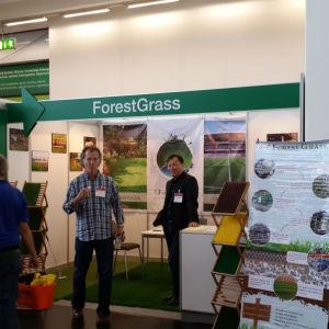 Het Kunstmatige Gras van het Landschap van Forestgrass op de Handelsbeurs van het Kanton