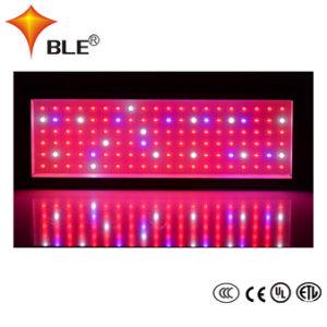 IP65 LED si sviluppano chiari per coltura della fabbrica della pianta