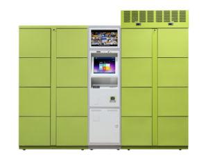 Elektronisches sicheres intelligentes Paket-Anlieferungs-Schließfach
