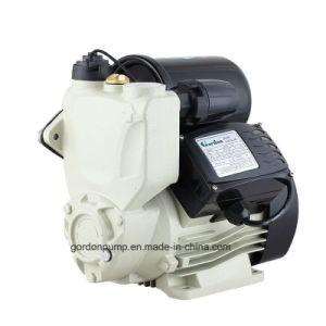 Tanque eléctrico Garden Jet Autoself cebado de bomba de circulación de agua a presión