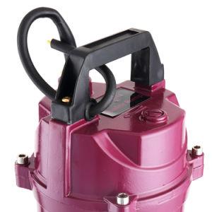 0,75 kw submersible de 1 pouce de l'étang avec les contrôleurs de pompe à eau
