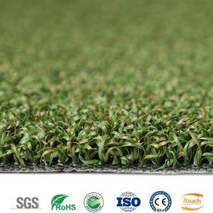 Künstliches Rasen-Golf-setzendes Grün