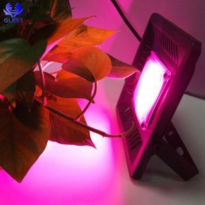 Crecen las luces LED 50W ultradelgadas proyector LED LED luces hidropónico