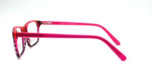Glazen van het Oog van het Frame van de Acetaat van het Ontwerp van Higo de Speciale Optische (FXA1111)