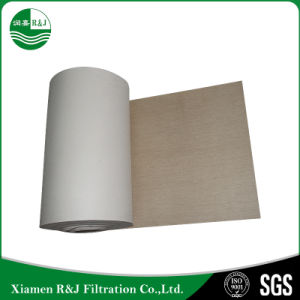 Tessuto filtrante di Nomex per industria di nero di carbonio con l'alta qualità
