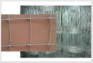 ファイルされる卸し売りステンレス鋼/草/農場の塀の製造