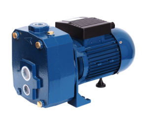 DP-1500 StraalPomp van het Water van de Hoge druk van de Zuiging van de Efficiency van Thailand de Hoge 2HP Elektrische Self-Priming Schone
