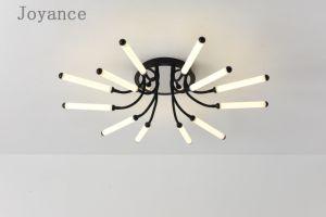 El tubo de acrílico LED modernos de la luz de techo el diseño europeo y americano