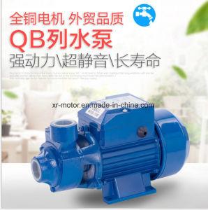1/2HP HP 1QB60 QB80 Bomba periférica