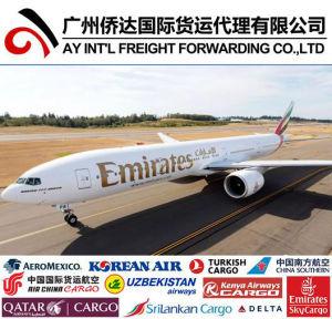 Быстрая доставка воздуха из Китая в Нигерию Express услуги курьера