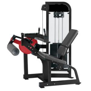 Equipamento de fitness ginásio comercial Treino Desportivo Body Building sentado equipamento de extensão da perna