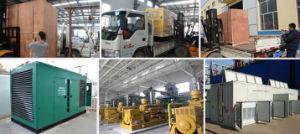 4 цикл 25квт биогаза генераторов