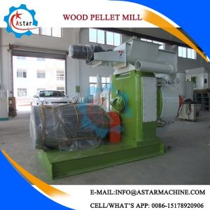 machine à granulés de palmiste balle de riz en Malaisie