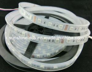 SMD5050 sicuro 12V RGB LED Strip Light per Clothes
