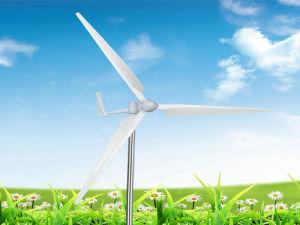 turbina di vento 400W (FD2.2-0.4/9)