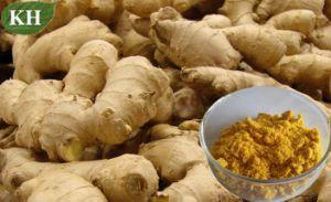 Ingwer-Auszug, Gingerols 5% bis 20% Prüfung durch HPLC