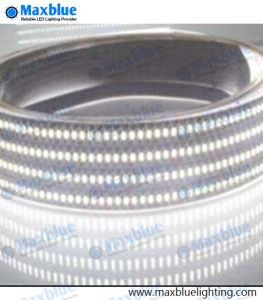 240M/LED SMD3014 TIRA DE LEDS LED 1200 12/24 Vdc Tira de luz LED