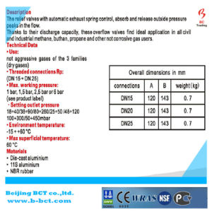 5 Lichaam van het Aluminium van de Afblaasklep van de staaf Dn25 Het Type Gegoten met Maat BCTNRV01