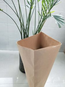 Настраиваемые PP тканый мешок для упаковки для уборки риса